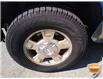 2011 Ford F-150 FX4 (Stk: W0851AXZ) in Barrie - Image 15 of 24