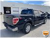 2013 Ford F-150 XLT (Stk: W0982AZ) in Barrie - Image 3 of 28