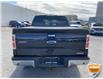 2013 Ford F-150 XLT (Stk: W0982AZ) in Barrie - Image 4 of 28