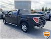 2013 Ford F-150 XLT (Stk: W0982AZ) in Barrie - Image 8 of 28