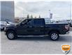 2013 Ford F-150 XLT (Stk: W0982AZ) in Barrie - Image 9 of 28