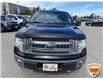 2013 Ford F-150 XLT (Stk: W0982AZ) in Barrie - Image 11 of 28