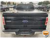2013 Ford F-150 XLT (Stk: W1111AZ) in Barrie - Image 3 of 11