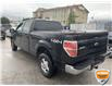 2013 Ford F-150 XLT (Stk: W1111AZ) in Barrie - Image 4 of 11
