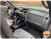 2011 Ford Escape Limited Grey