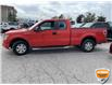 2012 Ford F-150 STX (Stk: W1077AXZ) in Barrie - Image 5 of 20