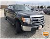 2013 Ford F-150 XLT (Stk: W0993BZ) in Barrie - Image 2 of 18