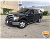 2013 Ford F-150 XLT (Stk: W0993BZ) in Barrie - Image 9 of 18