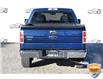 2010 Ford F-150 XLT (Stk: D100570AZ) in Kitchener - Image 4 of 20