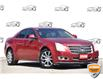 2008 Cadillac CTS 3.6L (Stk: D100860AXZ) in Kitchener - Image 1 of 21