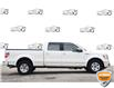 2010 Ford F-150 Lariat (Stk: 155900AXZ) in Kitchener - Image 3 of 19