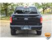 2016 Ford F-150 XLT (Stk: 21BR4750AX) in Kitchener - Image 4 of 19