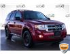 2010 Ford Escape XLT Manual (Stk: 44517AUXZ) in Innisfil - Image 1 of 19