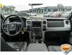 2014 Ford F-150 FX4 (Stk: 35128AUXZ) in Barrie - Image 11 of 25