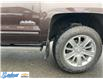 2016 Chevrolet Silverado 1500 High Country (Stk: M233A) in Thunder Bay - Image 5 of 6