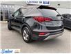 2017 Hyundai Santa Fe Sport  (Stk: M343A) in Thunder Bay - Image 3 of 19