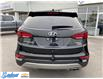 2017 Hyundai Santa Fe Sport  (Stk: M343A) in Thunder Bay - Image 4 of 19