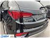 2017 Hyundai Santa Fe Sport  (Stk: M343A) in Thunder Bay - Image 16 of 19