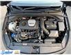 2019 Hyundai Elantra GT  (Stk: M233B) in Thunder Bay - Image 14 of 20