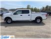 2015 Ford F-150  (Stk: M141E) in Thunder Bay - Image 6 of 21
