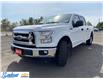 2015 Ford F-150  (Stk: M141E) in Thunder Bay - Image 7 of 21