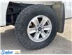 2015 Ford F-150  (Stk: M141E) in Thunder Bay - Image 9 of 21