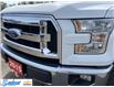 2015 Ford F-150  (Stk: M141E) in Thunder Bay - Image 15 of 21