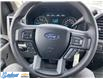 2015 Ford F-150  (Stk: M141E) in Thunder Bay - Image 21 of 21