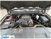 2013 Chevrolet Silverado 1500 WT (Stk: M421A2) in Thunder Bay - Image 14 of 20
