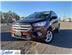 2018 Ford Escape SE (Stk: M428A) in Thunder Bay - Image 1 of 19
