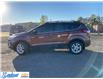 2018 Ford Escape SE (Stk: M428A) in Thunder Bay - Image 2 of 19