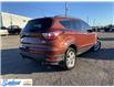 2018 Ford Escape SE (Stk: M428A) in Thunder Bay - Image 5 of 19