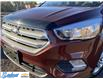 2018 Ford Escape SE (Stk: M428A) in Thunder Bay - Image 15 of 19