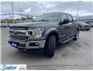 2018 Ford F-150  (Stk: 8841) in Thunder Bay - Image 7 of 20
