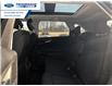 2016 Ford Edge SEL (Stk: GBC38527) in Wallaceburg - Image 11 of 13