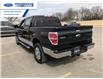 2012 Ford F-150 XLT (Stk: CKD34481T) in Wallaceburg - Image 10 of 14