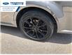 2018 Ford Flex SEL (Stk: JBA00316T) in Wallaceburg - Image 16 of 16