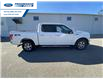 2017 Ford F-150 XLT (Stk: HFC54448T) in Wallaceburg - Image 10 of 15