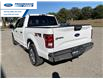 2017 Ford F-150 XLT (Stk: HFC54448T) in Wallaceburg - Image 13 of 15