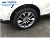 2016 Ford Edge Titanium (Stk: GBC47500) in Wallaceburg - Image 15 of 15