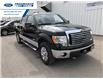 2012 Ford F-150 XLT (Stk: CKD34481T) in Wallaceburg - Image 1 of 14