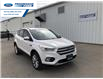2017 Ford Escape Titanium (Stk: HUE60637T) in Wallaceburg - Image 1 of 14