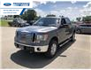2012 Ford F-150 XLT (Stk: CFB98418T) in Wallaceburg - Image 8 of 15