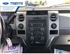 2012 Ford F-150 XLT (Stk: CFB98418T) in Wallaceburg - Image 3 of 15
