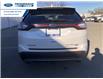 2016 Ford Edge Titanium (Stk: GBC47553) in Wallaceburg - Image 9 of 14