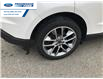 2016 Ford Edge Titanium (Stk: GBC22032) in Wallaceburg - Image 16 of 16