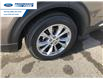 2021 Ford Explorer XLT (Stk: MGA34571) in Wallaceburg - Image 15 of 15