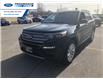 2021 Ford Explorer Limited (Stk: MNA07575) in Wallaceburg - Image 6 of 16