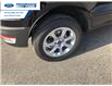 2020 Ford EcoSport SE (Stk: LC382857) in Wallaceburg - Image 15 of 15