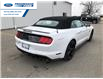 2021 Ford Mustang GT Premium (Stk: M5117666) in Wallaceburg - Image 12 of 8